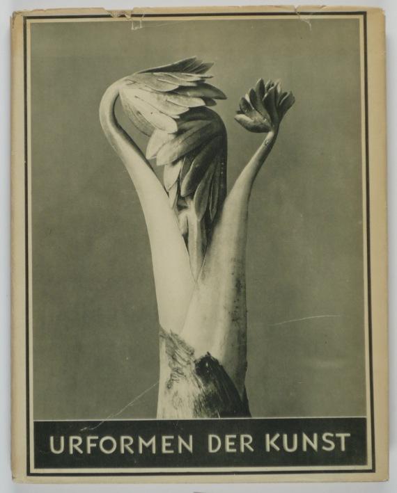 http://shop.berlinbook.com/fotobuecher/blossfeldt-karl-urformen-der-kunst::9083.html