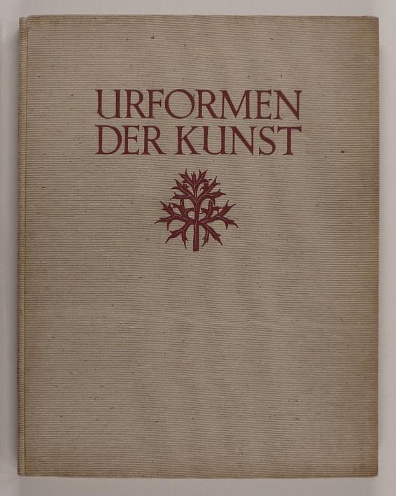 http://shop.berlinbook.com/fotobuecher/blossfeldt-karl-urformen-der-kunst::10975.html