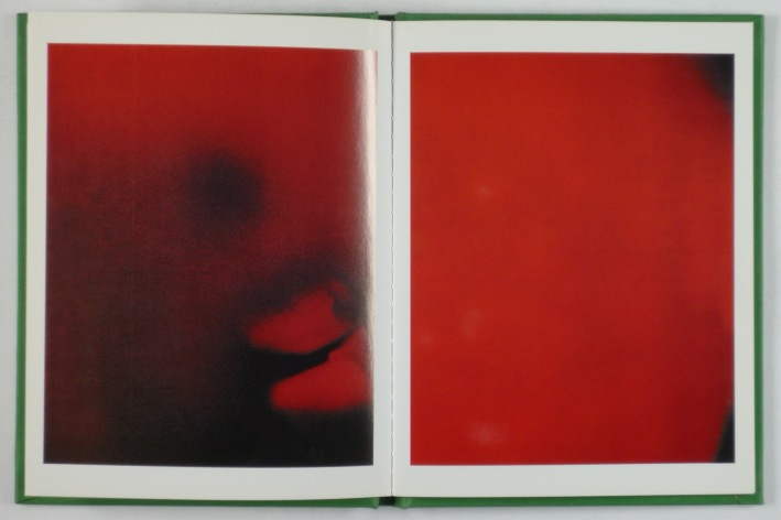 http://shop.berlinbook.com/fotobuecher/weifenbach-terri-instruction-manual-no-1-21-may-1995::3600.html